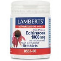 ECHINACEA 1000MG 60 TABLETAS LAMBERTS